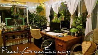 Peachy Green's Office