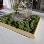 Vintage frame around vase and filled with moss