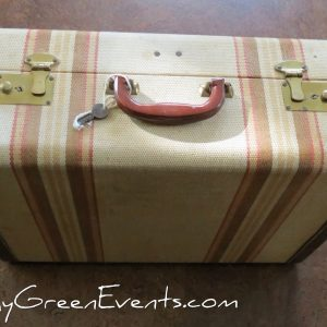 Large striped suitcase with cream interior for rent