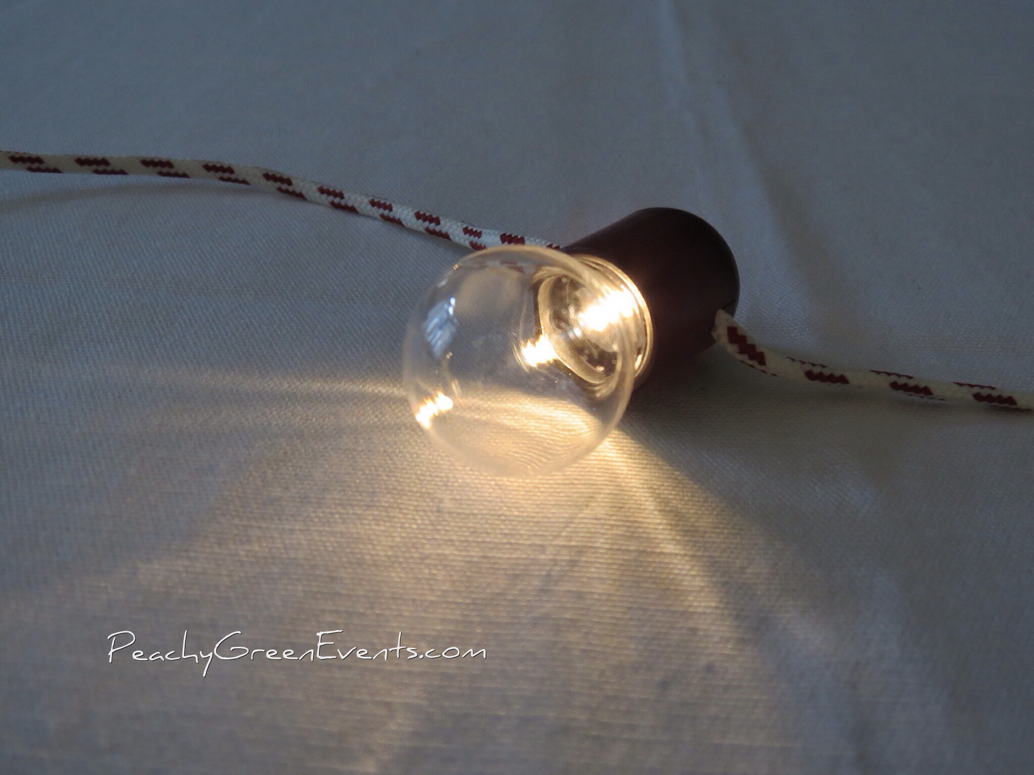 Vintage Style Small LED String Lights, Battery Operated Peachy Green Events & Rentals